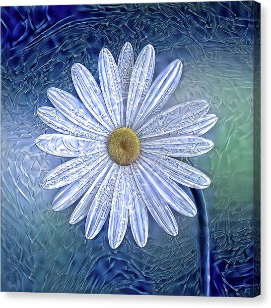 Ice Daisy Flower Canvas Print