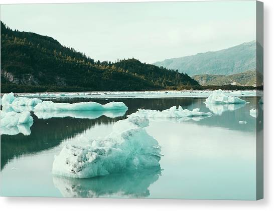 Glacier Bay Canvas Print - Icebergs Floating Off The Shore At The by Mint Images - Paul Edmondson