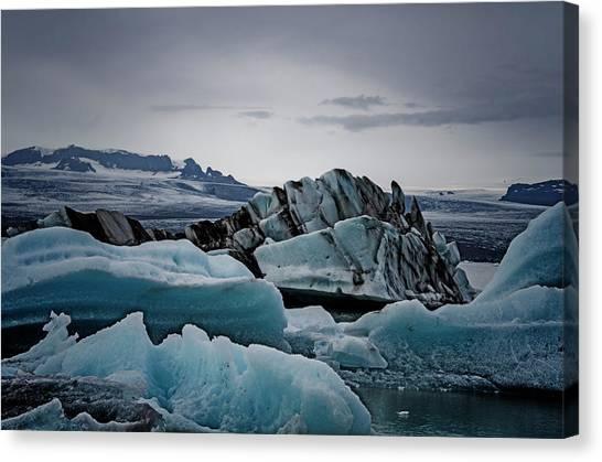 Icy Stegosaurus Canvas Print