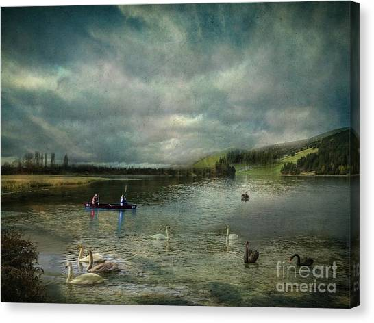 Idyllic Swans Lake Canvas Print