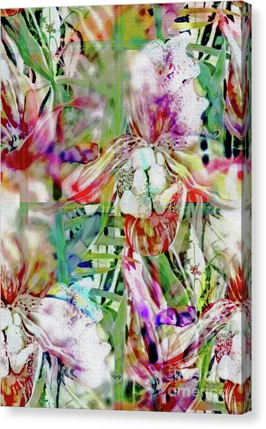 Canvas Print - Illusions Of Orchids by Mindy Newman