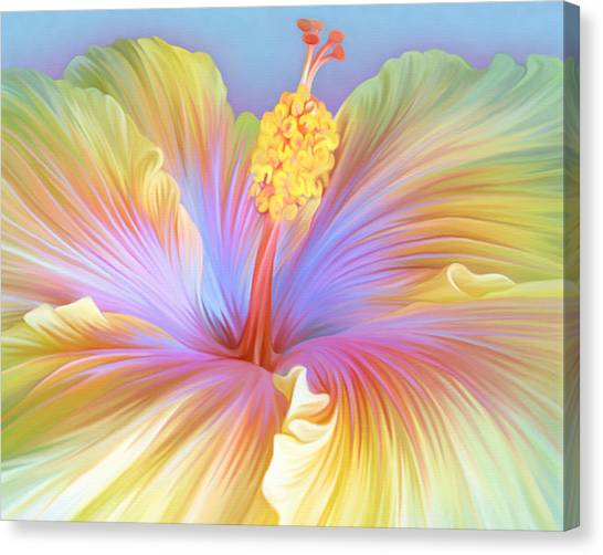 Illustration Of Hibiscus Flower Canvas Print by Illustration By Shannon Posedenti