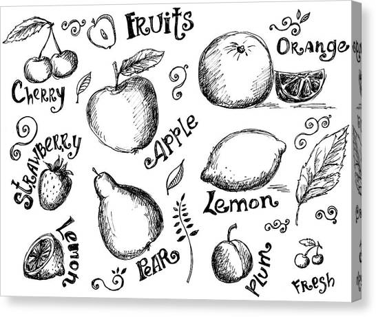 Illustrations Of Various Fruits And Canvas Print by Kalistratova