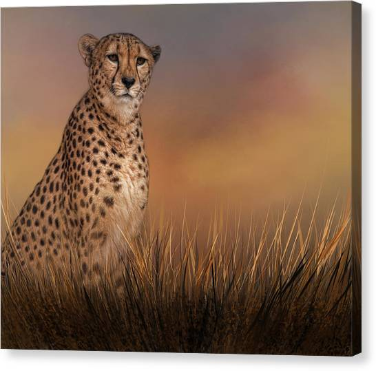 In The Brush Canvas Print