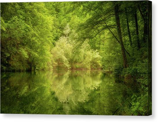 In The Heart Of Nature Canvas Print
