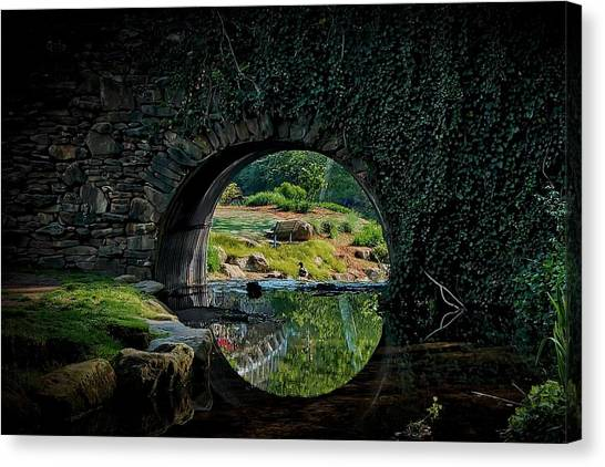 In The Middle Of A Reflection Canvas Print