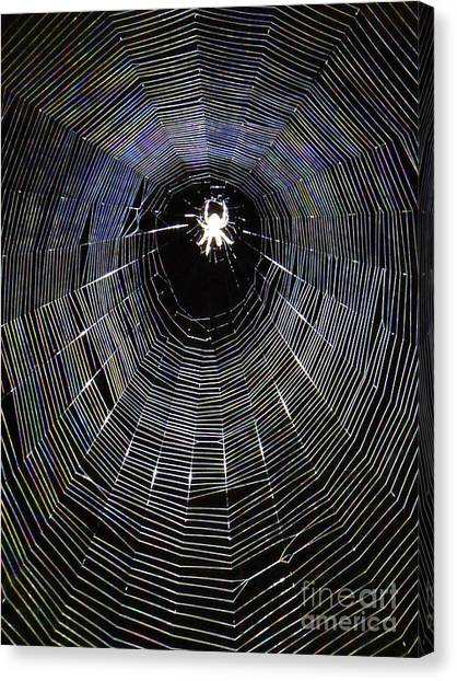 In The Web Canvas Print
