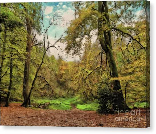 Canvas Print featuring the photograph In The Woods by Leigh Kemp