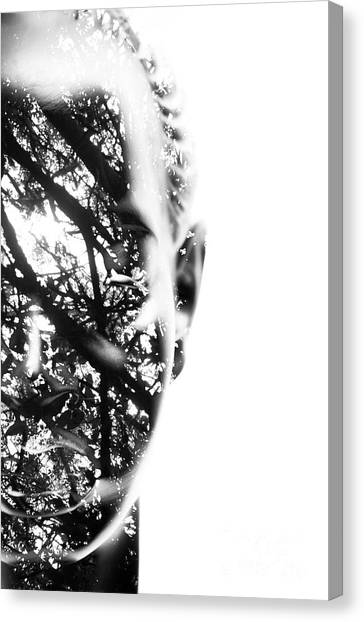 Soul Canvas Print - In Vision by Jorgo Photography - Wall Art Gallery
