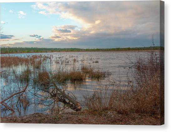 Canvas Print featuring the photograph Incoming In The New Jersey Pine Barrens by Kristia Adams