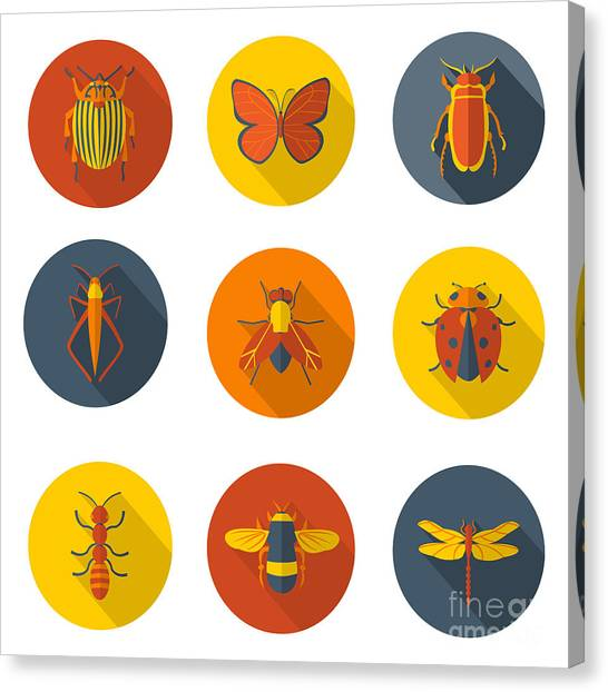 Sly Canvas Print - Insects Flat Icons by Sly Raccoon