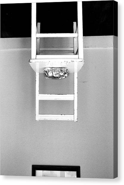 Canvas Print featuring the photograph Attraction / The Chair Project by Dutch Bieber