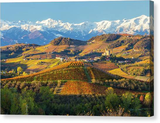 Italy, Piedmont, Langhe, Cuneo Canvas Print by Peter Adams