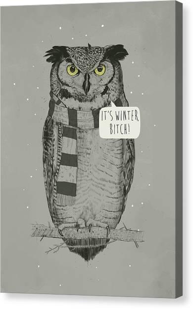 Winter Canvas Print - It's Winter Bitch by Balazs Solti