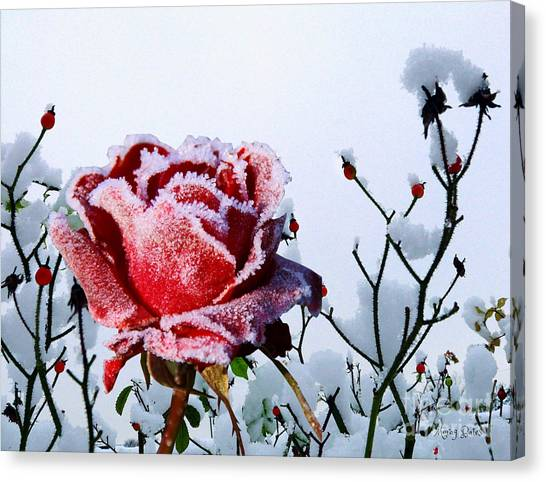 Jack Frost Canvas Print