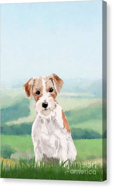 Purebred Canvas Print - Jack Russell Terrier by John Edwards