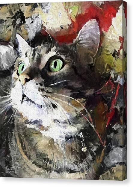 Manx Cat Canvas Print - Jack The Green Eyed Manx Cat by Peggy Collins