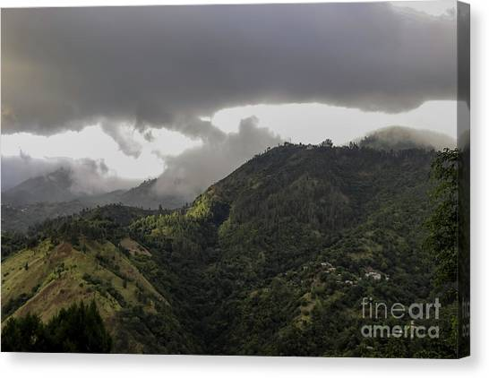Jamaican Blue Mountains Canvas Print