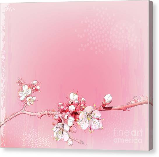 Japanese Gardens Canvas Print - Japanese Cherry Blossoms In Full Bloom by Reshetnyova Oxana