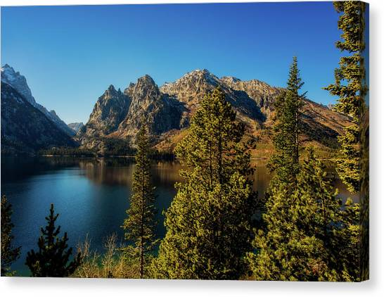 Canvas Print featuring the photograph Jenny Lake by Pete Federico