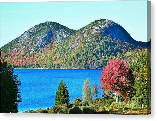 Canvas Print featuring the photograph Jordan Pond Bubbles by Patti Whitten