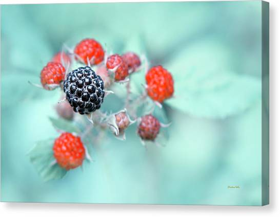 Wild Berries Canvas Print - Juicy Berries by Christina Rollo