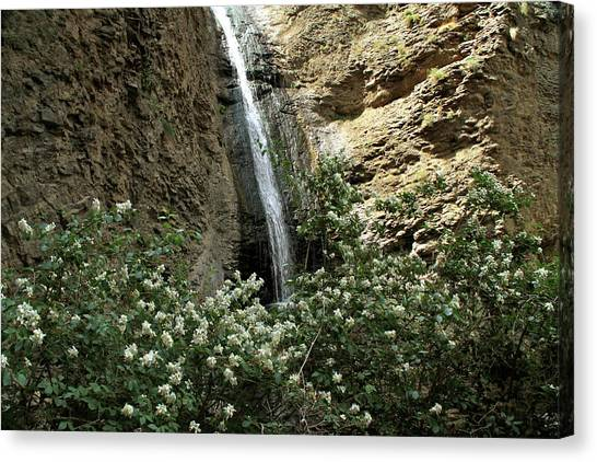 Jump Creek Falls Canyon Canvas Print