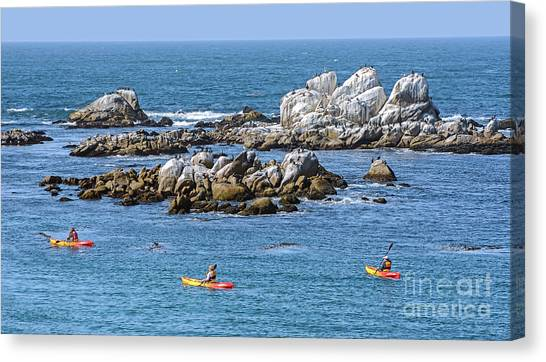 Kayakers Experience Bird Rock At Pacific Grove Canvas Print