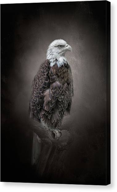 Keeping Watch Canvas Print