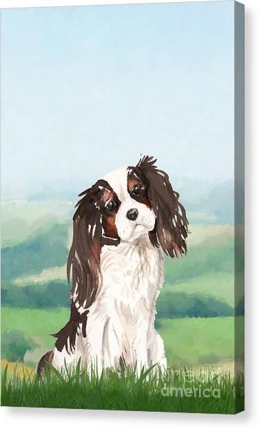 Purebred Canvas Print - King Charles Spaniel by John Edwards
