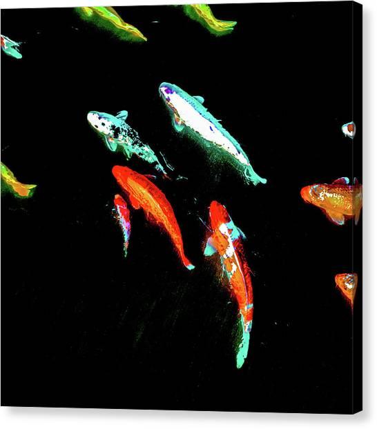 Koicarpscape 3 Canvas Print