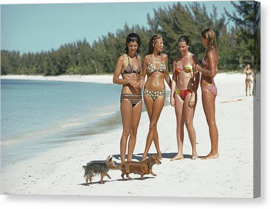 Ladies Of Lyford Cay Canvas Print by Slim Aarons