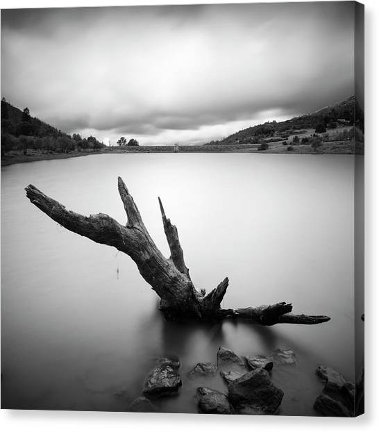 Lake Cuyamaca Stump And Clouds Canvas Print by William Dunigan