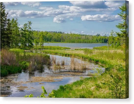 Lake Itasca Beauty Canvas Print