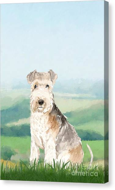 Purebred Canvas Print - Lakeland Terrier by John Edwards