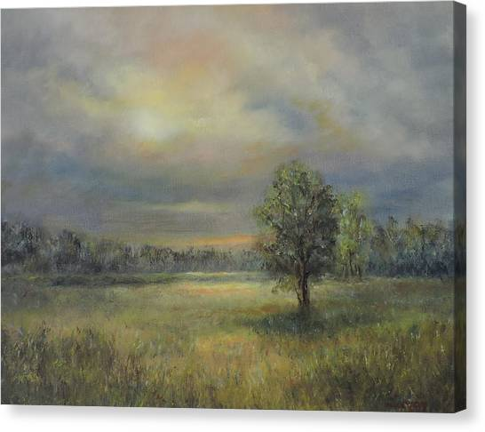 Landscape Of A Meadow With Sun And Trees Canvas Print