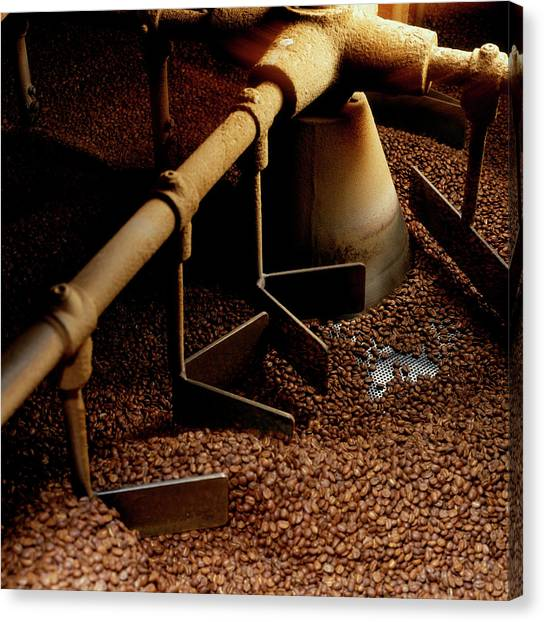 Large Scale Coffee Roaster Roasting Canvas Print