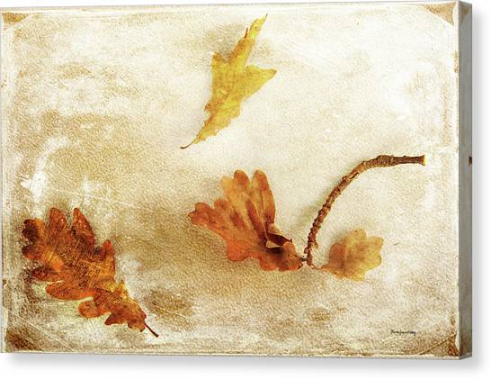 Canvas Print featuring the photograph Last Days Of Fall by Randi Grace Nilsberg