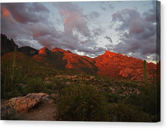 Canvas Print featuring the photograph Last Light On Catalina Mountains by Chance Kafka