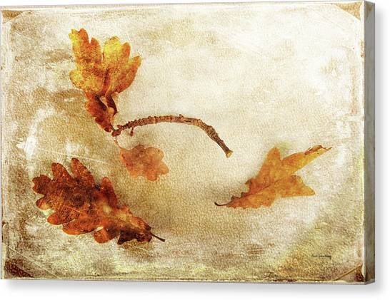 Canvas Print featuring the photograph Late Late Fall by Randi Grace Nilsberg