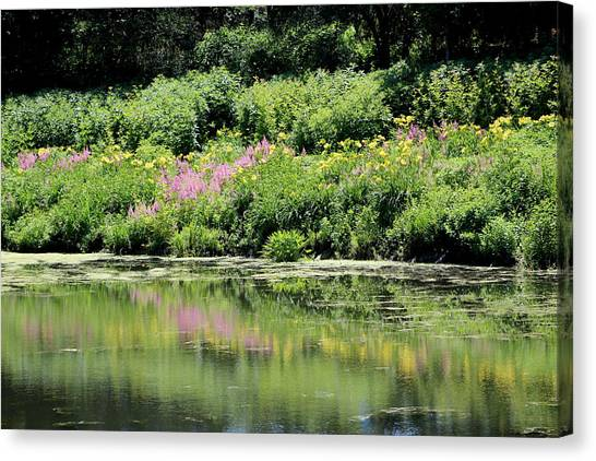 Lavender And Gold Reflections At Chicago Botanical Gardens Canvas Print