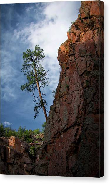 Leaning Over The Abyss Canvas Print