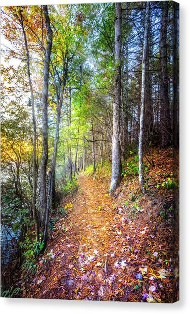 Canvas Print - Leaves On The Trail by Debra and Dave Vanderlaan