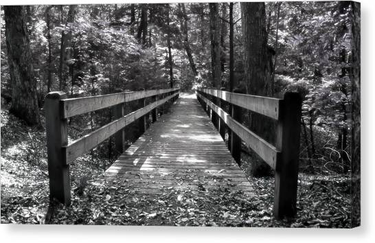 Leelanau Trail Canvas Print