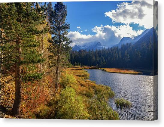 Canvas Print featuring the photograph Legends Of The Fall by Tassanee Angiolillo