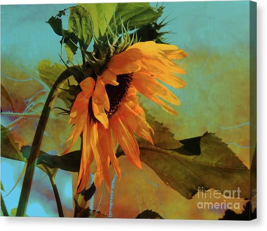 Praise The Lord Canvas Print - Let All Creation Praise Yahweh by Beverly Guilliams