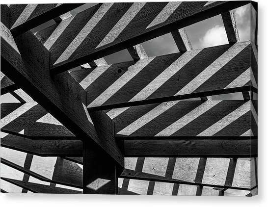 Arbor Canvas Print - Light And Shadow Abstract by Tom Mc Nemar