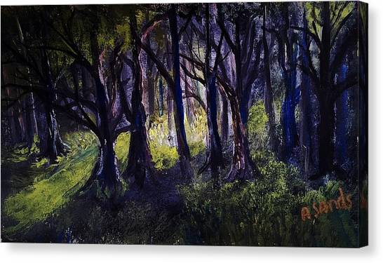 Light In The Forrest Canvas Print