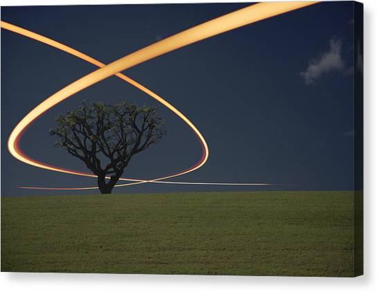 Light Trails Around Tree Canvas Print