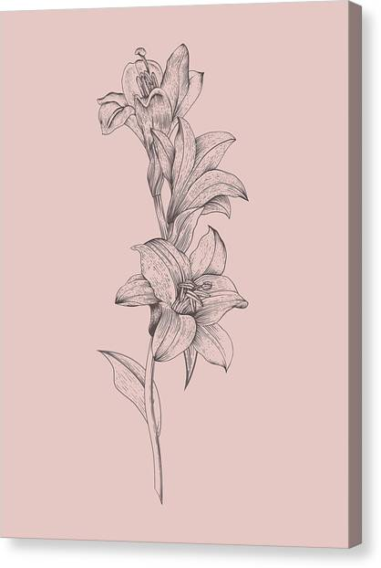 Bouquet Canvas Print - Lily Blush Pink  Flower by Naxart Studio